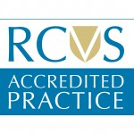 RCVS Accredited sticker